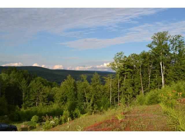 529 Brownsville Road, Moretown, VT 05676 (MLS #4763441) :: Parrott Realty Group