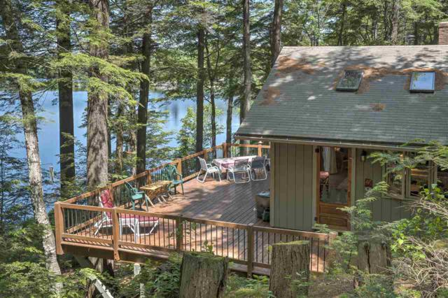 231 Treelyn Road, Stoddard, NH 03464 (MLS #4763604) :: Parrott Realty Group