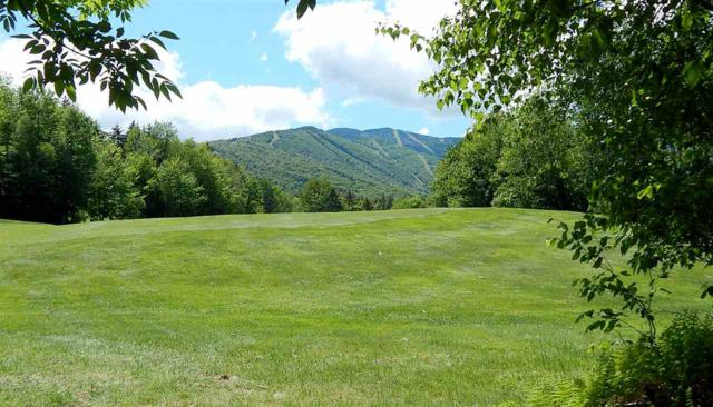Lot 50 Norwegian Lane Lot 50, Warren, VT 05674 (MLS #4763607) :: Parrott Realty Group