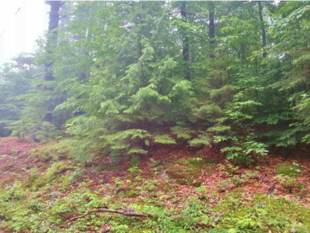 Lot 1 Old Stage Road, Chester, VT 05143 (MLS #4764629) :: Lajoie Home Team at Keller Williams Realty