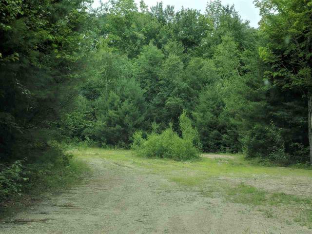 0 Goddard Road #2, Groton, NH 03241 (MLS #4764651) :: Parrott Realty Group