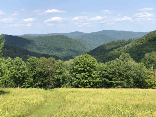 1813B West Hill Road Road, Townshend, VT 05353 (MLS #4765924) :: Hergenrother Realty Group Vermont