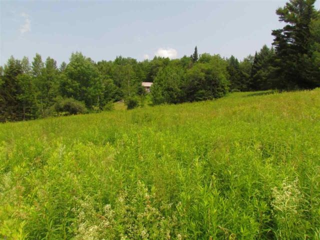 54 Trail 18 Drive, Worcester, VT 05682 (MLS #4766456) :: The Gardner Group
