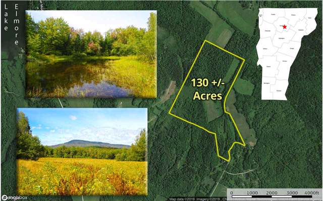1063 King Road, Elmore, VT 05680 (MLS #4776094) :: The Gardner Group