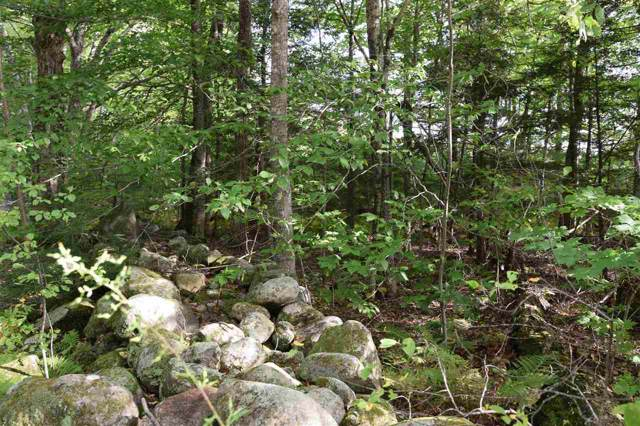 Windmill Road, Campton, NH 03223 (MLS #4776239) :: Hergenrother Realty Group Vermont