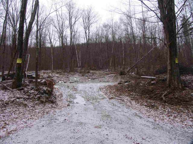 Birdseye Road, Ira, VT 05777 (MLS #4776412) :: Hergenrother Realty Group Vermont