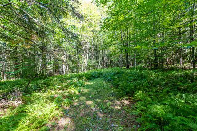 35 Wild Berry Lane, Underhill, VT 05489 (MLS #4777693) :: Hergenrother Realty Group Vermont