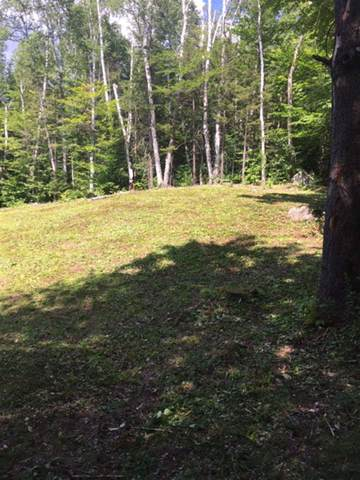 00 Town Farm Road #1, Woodbury, VT 05650 (MLS #4777855) :: The Gardner Group
