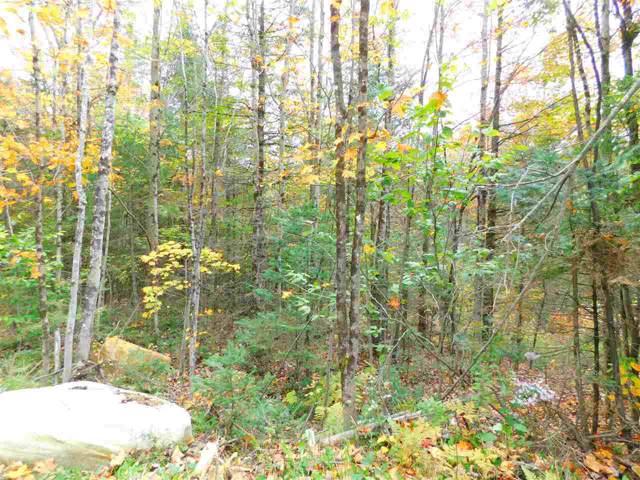 153 French Hollow Road, Winhall, VT 05340 (MLS #4778466) :: Keller Williams Coastal Realty