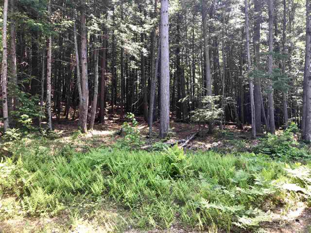 Lot 75.3 Crown Ridge Road #75.3, Conway, NH 03860 (MLS #4779852) :: Keller Williams Coastal Realty