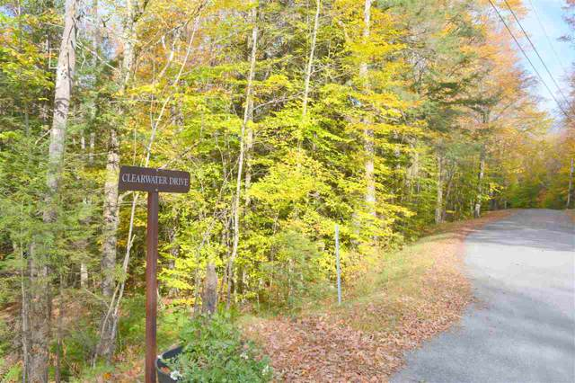 10 Clearwater Drive, Grantham, NH 03753 (MLS #4780834) :: Keller Williams Coastal Realty