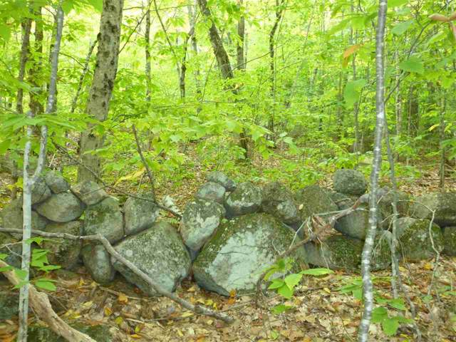 Lot 68, 68A, 91 Bear Pond Road, Alton, NH 03809 (MLS #4781496) :: Hergenrother Realty Group Vermont