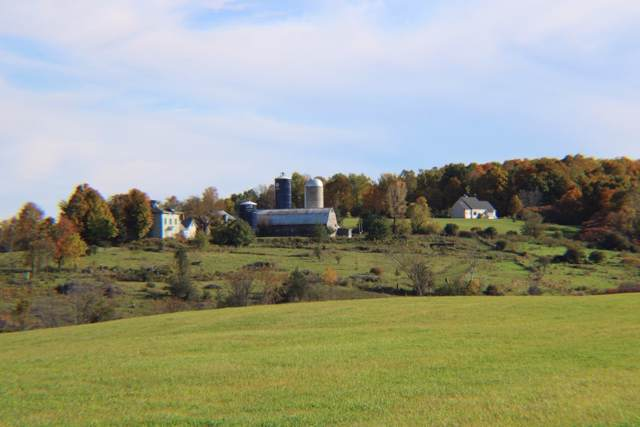 TBD Route 74, Cornwall, VT 05753 (MLS #4781828) :: Parrott Realty Group