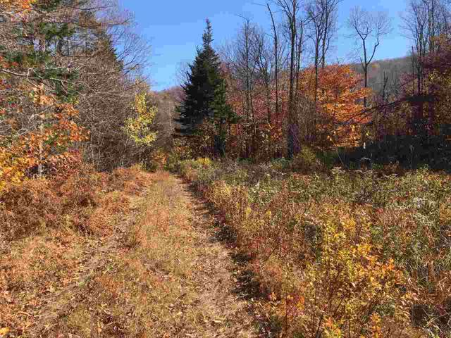 Rt. 100 Off E/S Route, Stratton, VT 05155 (MLS #4783096) :: Hergenrother Realty Group Vermont
