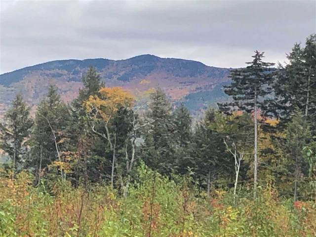 00 Halls Brook Road, Rumney, NH 03266 (MLS #4786336) :: Hergenrother Realty Group Vermont