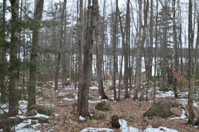 31 Robin Acres Drive, Wolfeboro, NH 03894 (MLS #4792645) :: Signature Properties of Vermont