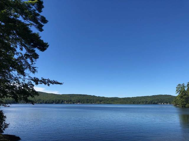 Sleeper's Island Lot 56, Alton, NH 03809 (MLS #4793284) :: Hergenrother Realty Group Vermont