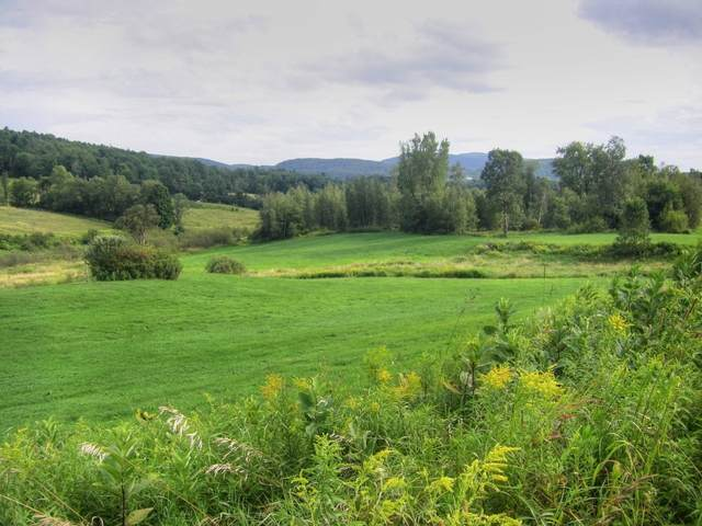 Lot 1 Paradis Lane, Bakersfield, VT 05441 (MLS #4795466) :: Signature Properties of Vermont