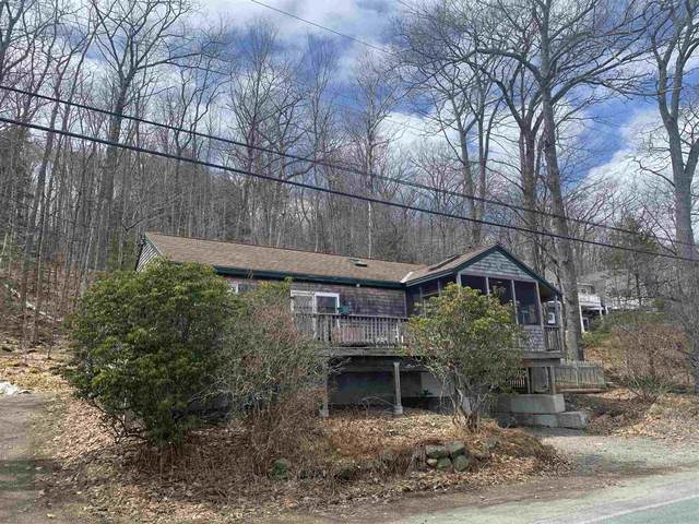 65 Nelson Road, Harrisville, NH 03450 (MLS #4800114) :: Parrott Realty Group