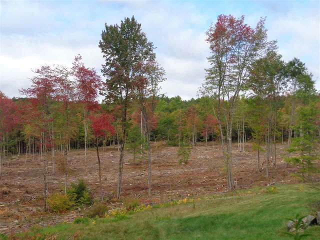 Lot 4 Wiggin Road, Danbury, NH 03230 (MLS #4804333) :: The Hammond Team