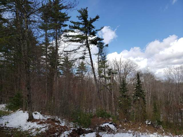 Lot 76 & 77 Wildcat Drive, Haverhill, NH 03765 (MLS #4804837) :: Keller Williams Coastal Realty