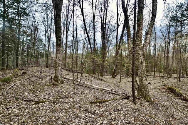 0 Snowshoe Trail 2A, Waterbury, VT 05676 (MLS #4805659) :: The Gardner Group