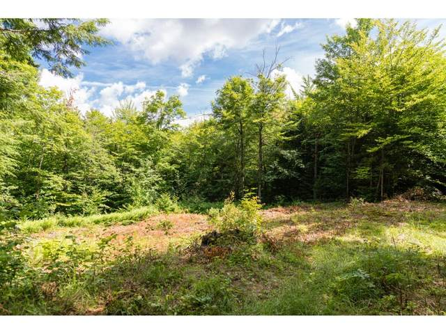 0 Taylor Road #5, Duxbury, VT 05676 (MLS #4807022) :: The Hammond Team