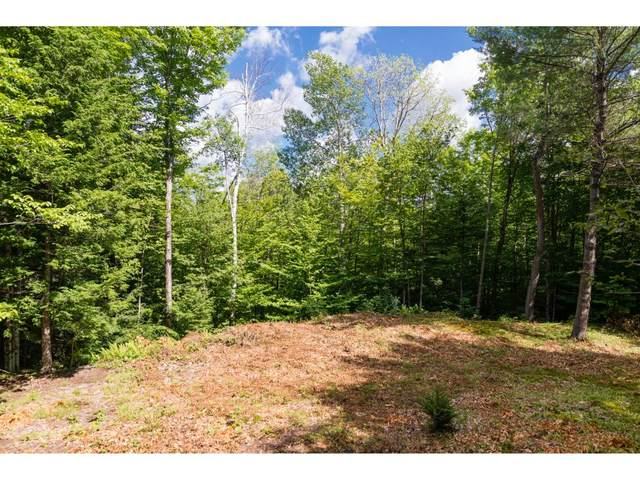 0 Taylor Road #4, Duxbury, VT 05676 (MLS #4807023) :: The Hammond Team