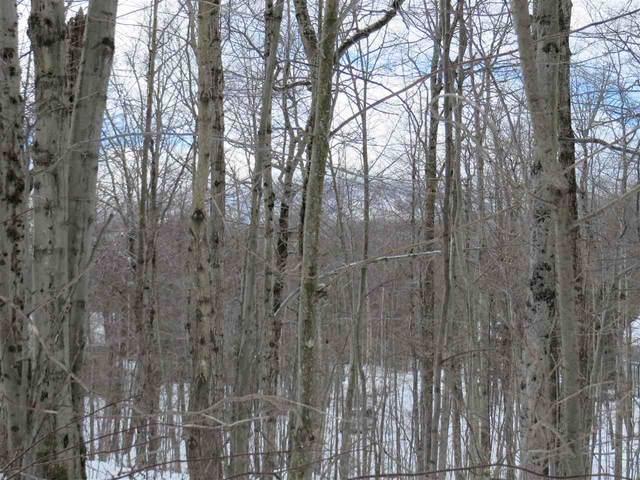 0 1.6 Acres Sugarbush Extension, Winhall, VT 05148 (MLS #4807787) :: The Gardner Group