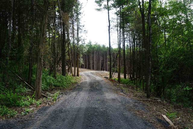 192 White Birch Lane, Charlotte, VT 05445 (MLS #4808395) :: Hergenrother Realty Group Vermont