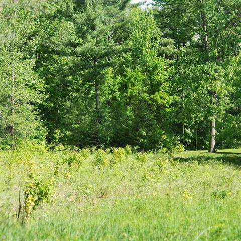 Lot#28 Cherry Lane, Newport City, VT 05855 (MLS #4808620) :: Hergenrother Realty Group Vermont