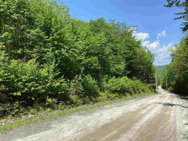 Youngs Road #38, East Haven, VT 05837 (MLS #4809994) :: The Gardner Group