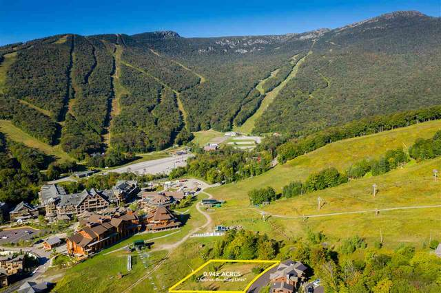 139 National Drive #4, Stowe, VT 05670 (MLS #4810906) :: The Gardner Group