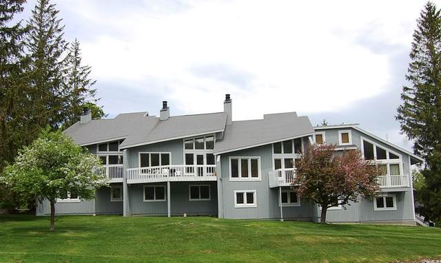 50 Shattarack Road C-3, Stratton, VT 05155 (MLS #4814285) :: The Gardner Group