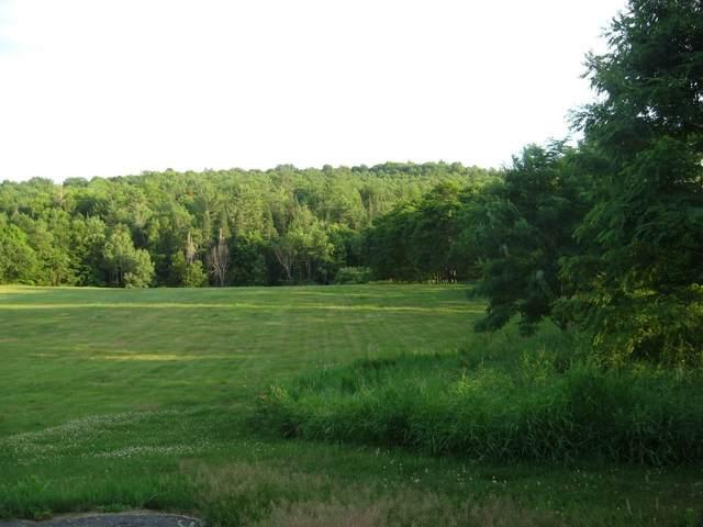 00 Mt Eustis Road, Littleton, NH 03561 (MLS #4815493) :: Hergenrother Realty Group Vermont