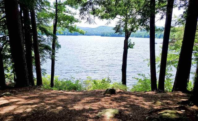 Lot 3 Cove Road #3, Eaton, NH 03832 (MLS #4815652) :: Parrott Realty Group