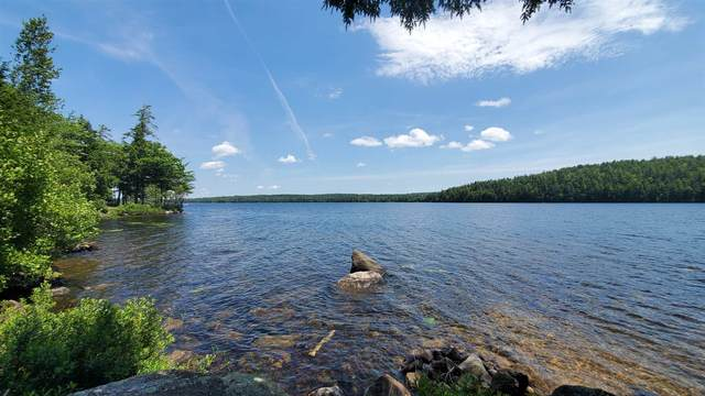 Lot 4 Cove Road #4, Eaton, NH 03832 (MLS #4815705) :: Parrott Realty Group