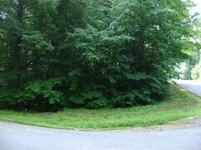00 St Moritz Street #002, Moultonborough, NH 03254 (MLS #4818696) :: Keller Williams Coastal Realty