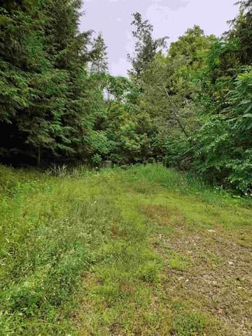 172 Farley Lane, Monkton, VT 05469 (MLS #4819649) :: The Gardner Group