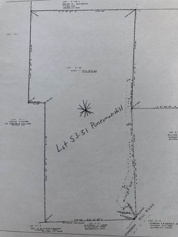 53-31 Ponemah Hill Road, Milford, NH 03055 (MLS #4819803) :: Parrott Realty Group