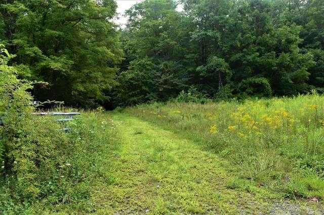 00 Auger Hole Road, Newfane, VT 05361 (MLS #4821803) :: Hergenrother Realty Group Vermont