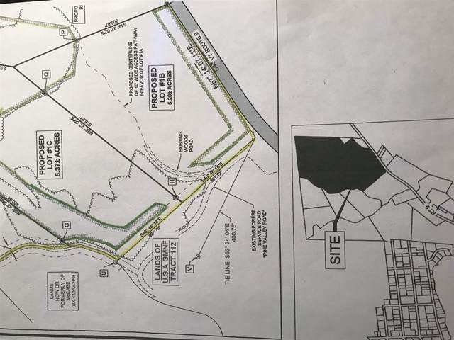 Little Pond Lane Forest Rd 275, Woodford, VT 05201 (MLS #4823143) :: Parrott Realty Group