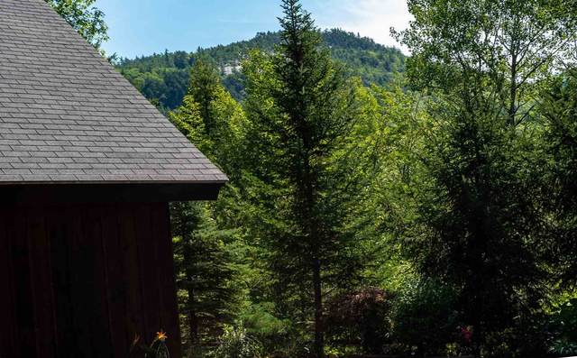 49 Ridge Circle, Conway, NH 03860 (MLS #4823233) :: Hergenrother Realty Group Vermont