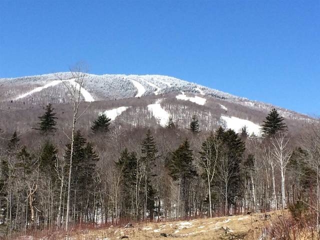 0 County Road Lot 11, Stratton, VT 05155 (MLS #4824116) :: The Hammond Team
