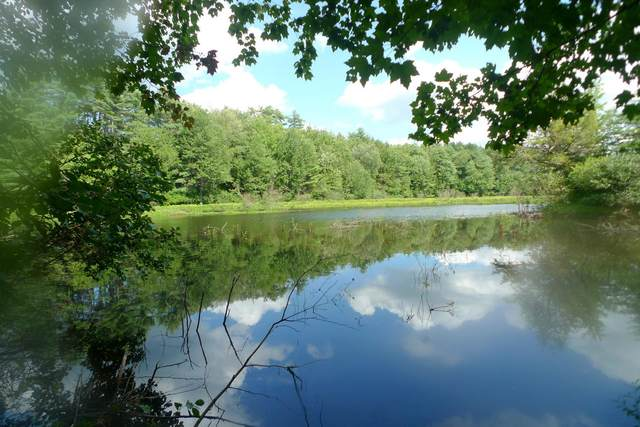 48 Cavil Mill Road, Fremont, NH 03844 (MLS #4824298) :: Parrott Realty Group