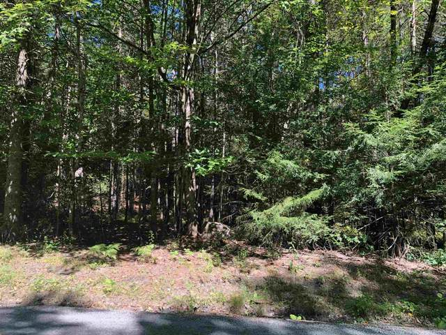 12 Winding Wood Road, Springfield, NH 03753 (MLS #4825358) :: Team Tringali