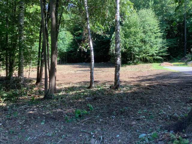 1774 (TBD) Route 9, Chesterfield, NH 03462 (MLS #4826799) :: Signature Properties of Vermont