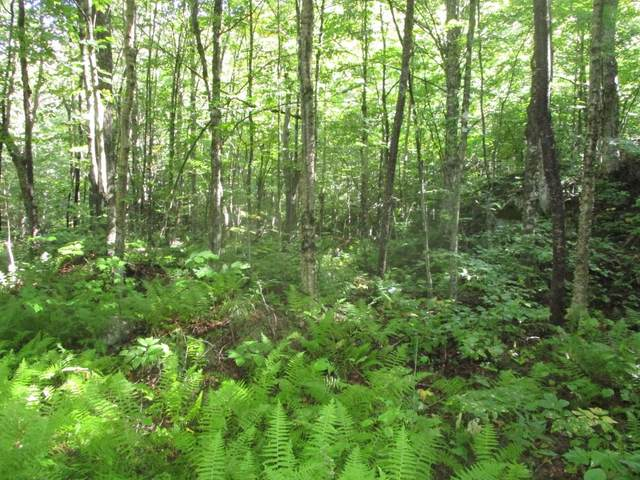 Lot B Marjorie Drive, Eden, VT 05652 (MLS #4827283) :: The Gardner Group
