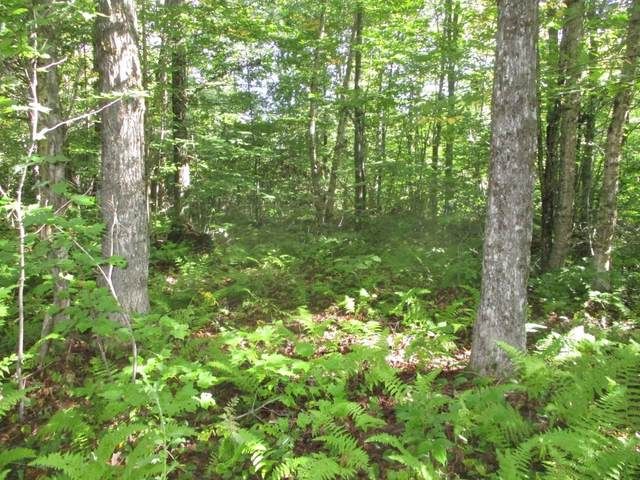 Lot D Marjorie Drive, Eden, VT 05652 (MLS #4827287) :: The Gardner Group