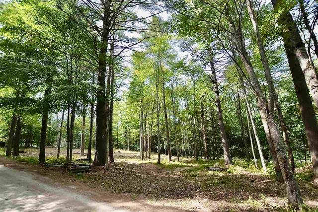 Lot 17B Pinnacle Point Road #0, Waterbury, VT 05676 (MLS #4827987) :: Parrott Realty Group